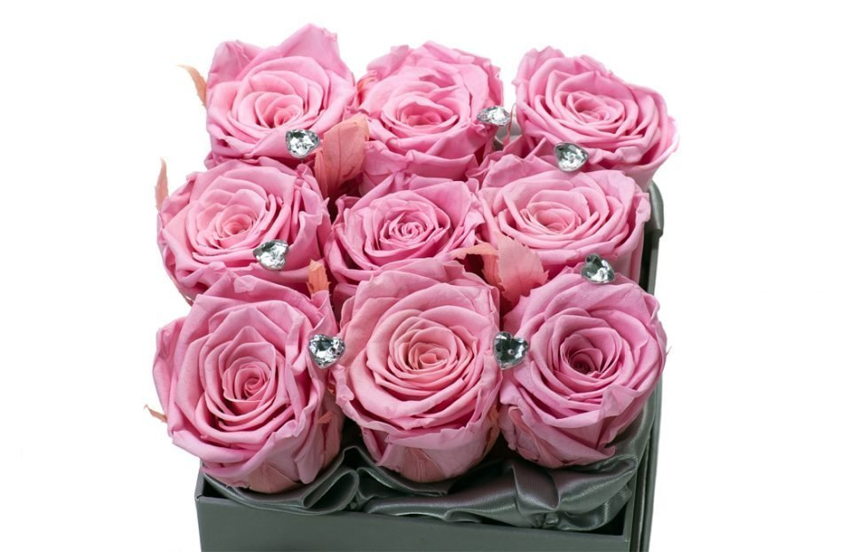 Pink-infinity-roses-in-a-box.