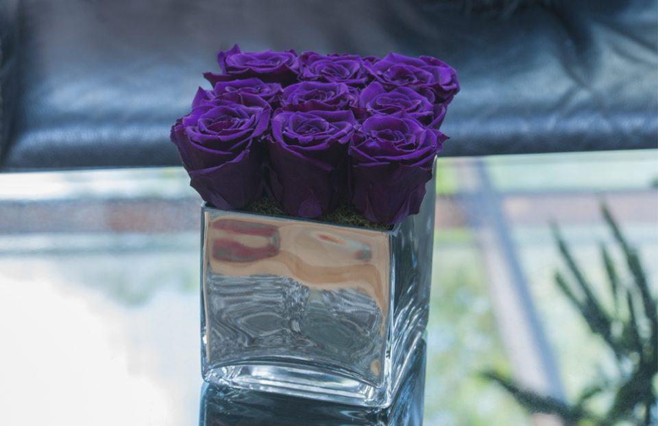 purple infinity roses