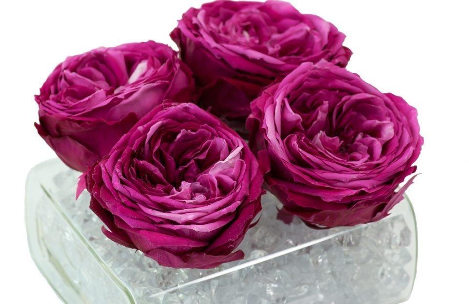 Silk Flower Arrangements 116