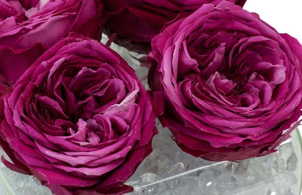 Silk Flower Arrangements 114