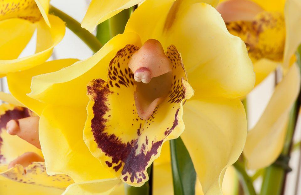 Silk Flower Arrangements 18