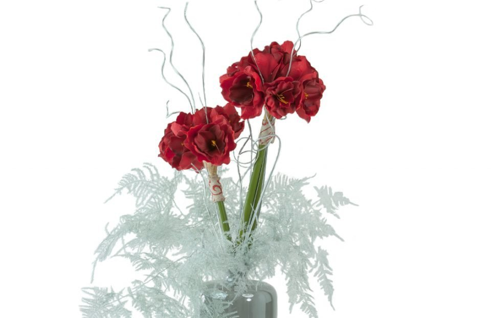 Christmas-Red-Amaryllis-arrangement