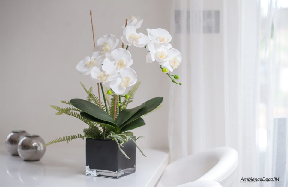 real touch orchids in cube