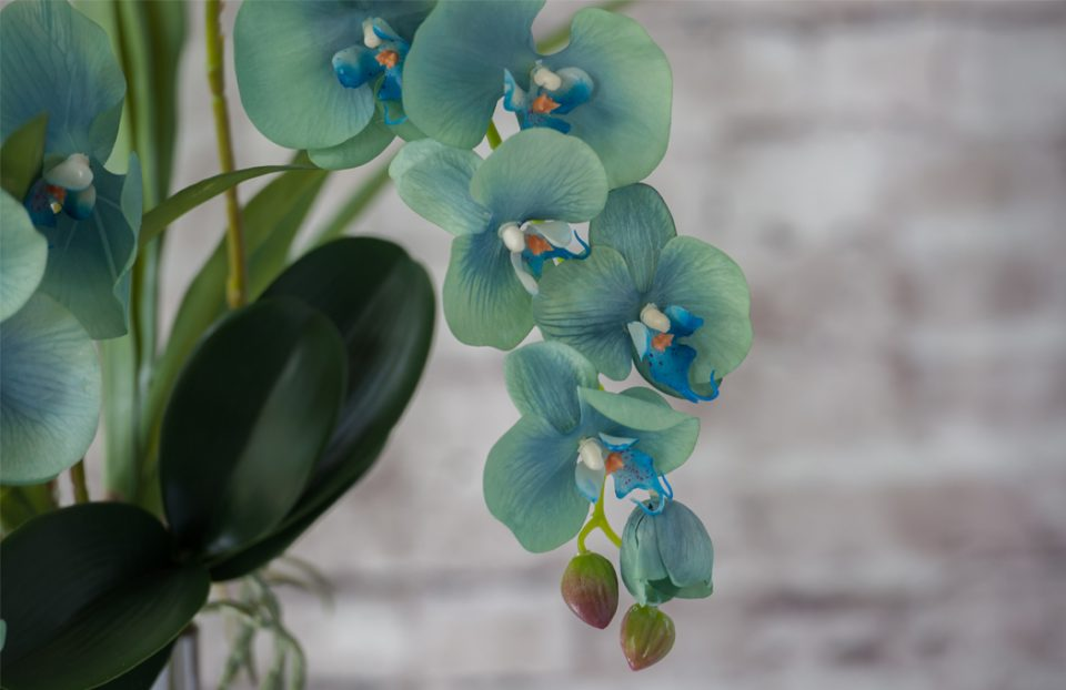 Tiffany blue faux orchids