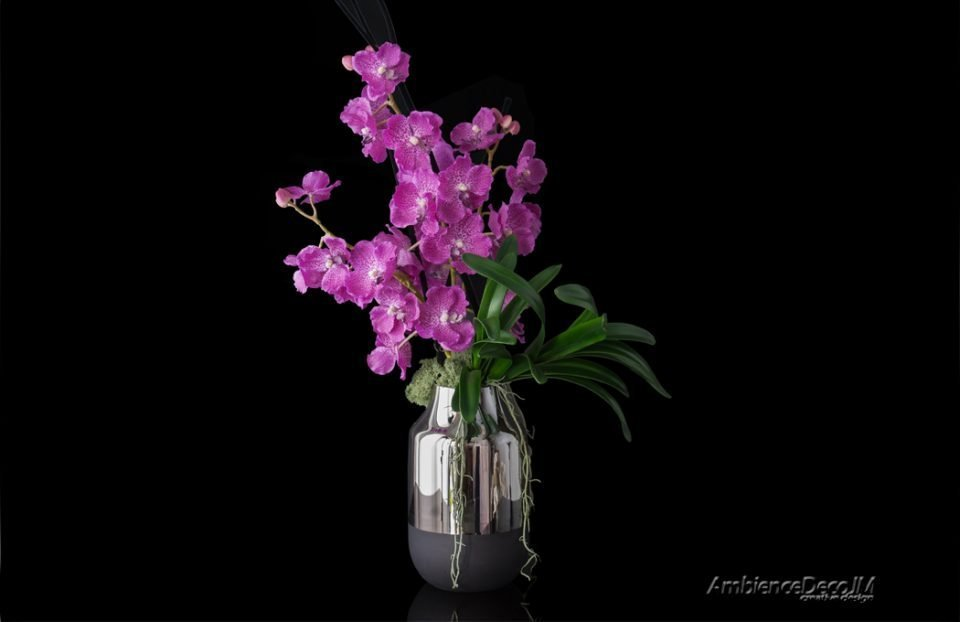 Artificial vanda orchids display