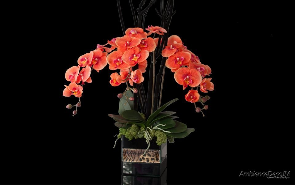 Real touch orange orchids display