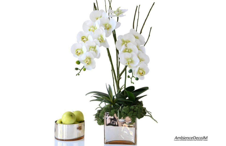 real touch orchids with succulent