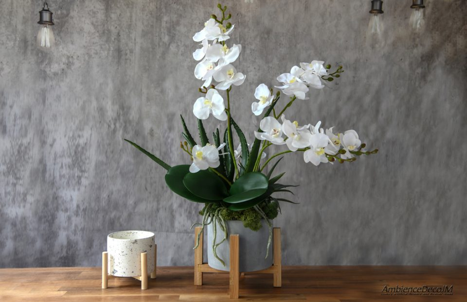 Lifelike orchids with succulents