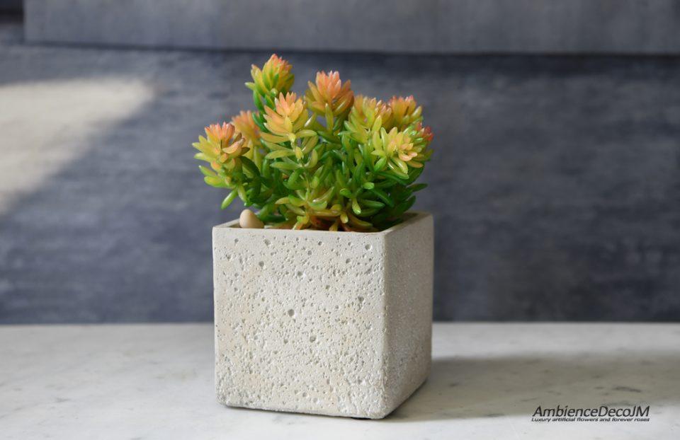 Lifelike succulent