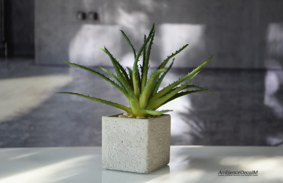 Real Touch Succulent